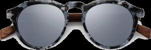 Lunettes de soleil en bois Rondes Monture Écaille - Silver - Vue de face